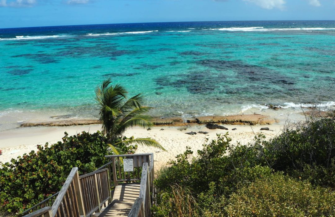A complete activity guide to St. Croix